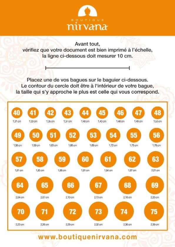 baguier pdf